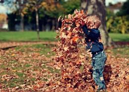 在公园里玩耍的小孩图片