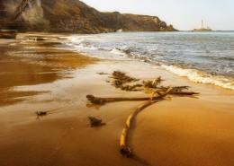 优美迷人的海滩图片(12张)