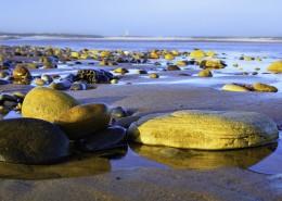 海滩上的鹅卵石图片(13张)