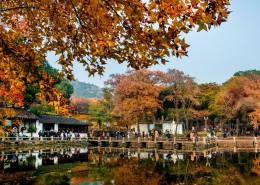 江苏苏州天平山自然风景