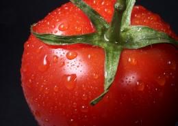 红色的西红柿图片(11张)