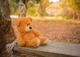 各种款式的泰迪熊玩具图片(10张)