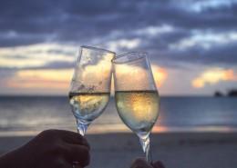 各种样式的酒杯图片(11张)