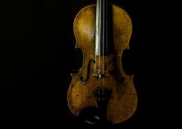 棕色的小提琴图片(10张)