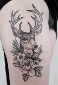 一组小清新黑色点刺麋鹿纹身图案欣赏