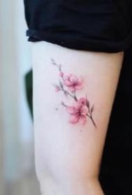 适合女生的9款粉红色小清新樱花纹身图片