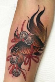 一组传统鲤鱼日式纹身图案