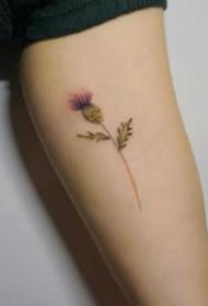 一组小清新花卉手臂纹身