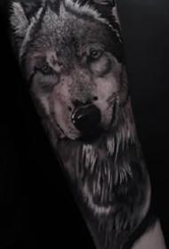一组欧美动物写实纹身图案