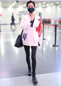 张钧甯针织毛衣时髦可爱机场照图片