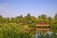 上海滨江森林公园风景图片(5张)