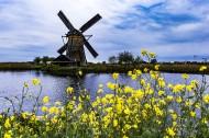 荷兰桑斯安斯风车村风景图片(14张)