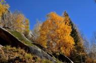 新疆可可托海风景图片(14张)