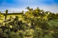 英国约克郡风景图片(15张)
