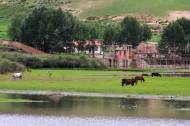 甘肃桑科草原风景图片(10张)