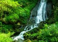 贵州香火岩的溪水风景图片(10张)