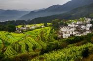 江西婺源风景图片(9张)