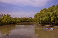 上海世纪公园风景图片(10张)