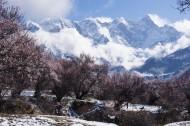 雪后的索松村风景图片(17张)