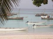 烟台桑岛海豚湾的早晨风光图片(10张)