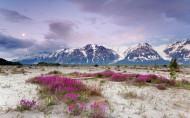 美国阿拉斯加风景图片(13张)