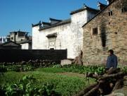 浙江温州瑶溪风景图片(12张)