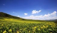 甘肃甘南草原风景图片(10张)