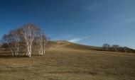 内蒙古乌兰布统秋色图片(14张)