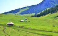 新疆喀纳斯风景图片(25张)