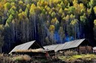 美丽的禾木乡风景图片(8张)