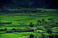 贵州兴义万峰林风景图片(10张)