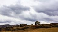 山西朔州右玉风景图片(10张)