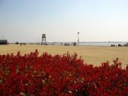 浙江杭州湾风景图片(26张)