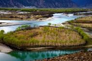 西藏尼洋河风景图片(8张)