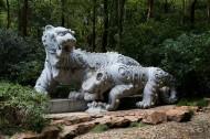 杭州西湖虎跑泉图片(6张)
