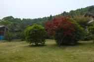 武汉东湖风景图片(11张)