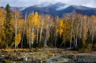 新疆可可托海风景图片(12张)