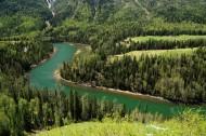 新疆喀纳斯风景图片(14张)