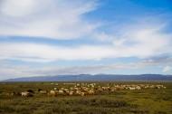 新疆阿勒泰图片(13张)