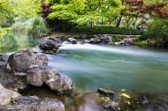杭州太子湾公园的小溪流图片(9张)