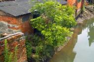 广州小洲村风景图片(16张)