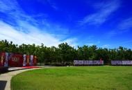 北京大兴古桑森林公园风景图片(13张)