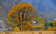 青海冷龙岭秋季风景图片(13张)
