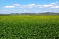 内蒙古多伦县风景图片(16张)