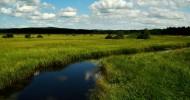 木兰围场风景图片(8张)