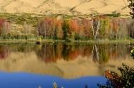 新疆白沙湖风景图片(9张)