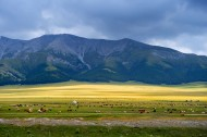 新疆赛里木湖风景图片(12张)