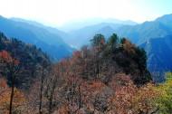 陕西长安净业寺风景图片(15张)