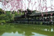 日本京都风景图片(21张)