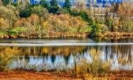 加拿大温哥华鹿湖公园风景图片(9张)
